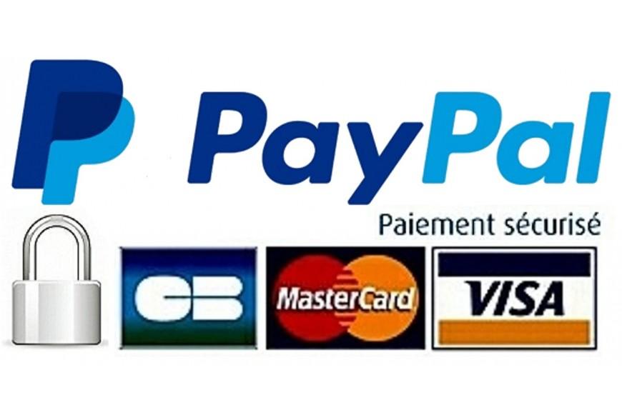 Mise en place de la solution de paiement sécurisée Paypal Checkout